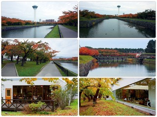 autumnpark.jpg