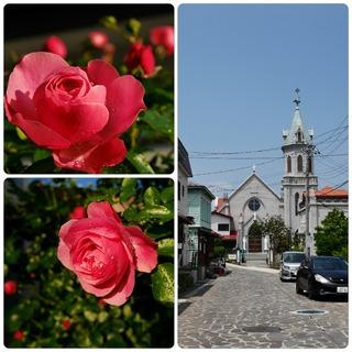 rose23.jpg